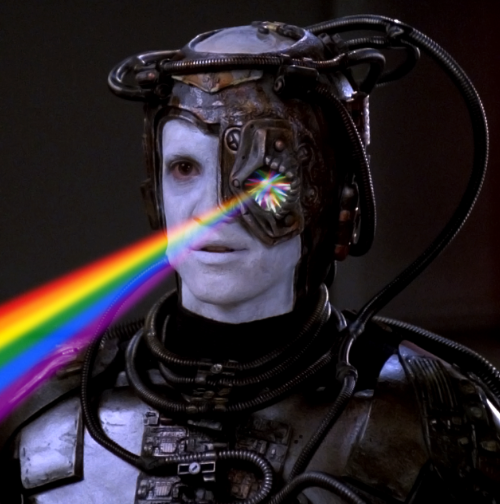 The Gay Borg